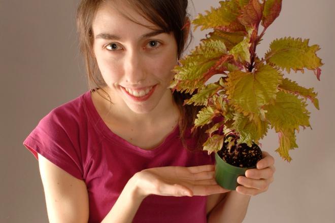 julie-benevole-craque-bitume-environnement-quebec-communication