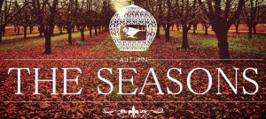 The Season - groupe folk