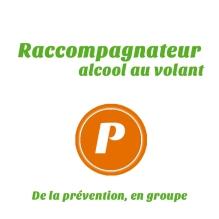 implication-ponctuelle-conduite-bénévolat-québec-campagne-groupe